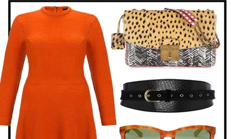 Daily Stylist | Tangerine Dream