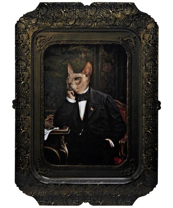 vladimir-cat-tray